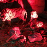 Halloween Night - Zoom Erlebniswelt Zoo Gelsenkirchen - - 5