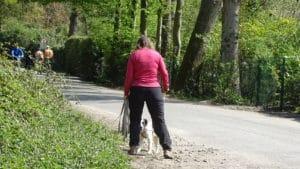 Hundeschule - den Weg blockieren